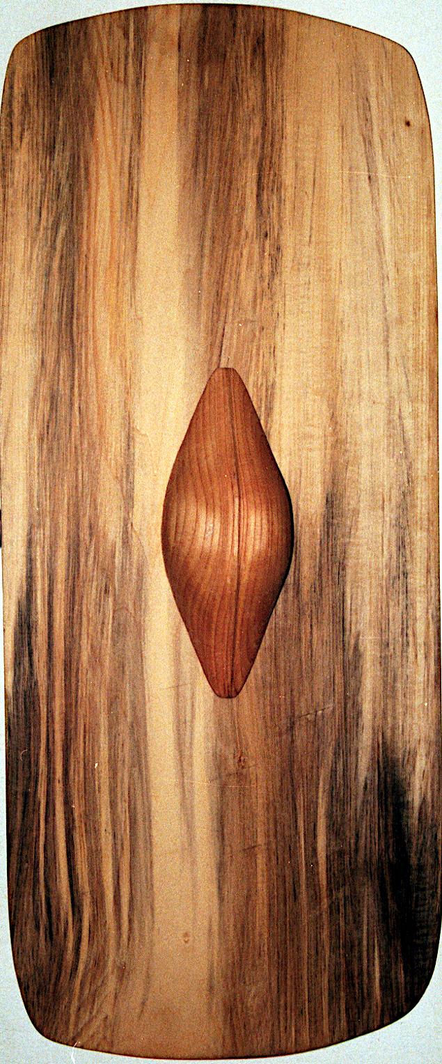 Forside af skjold med løs skjoldbule og greb.