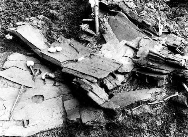 I 1921/22 blev våben udstyr og båd udgravet, ledet af konservator G. Rosenberg.