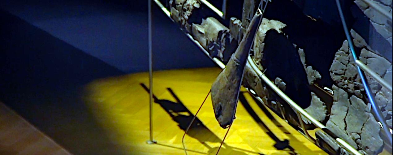Ror på Hjortspringbåden, Nationalmuseet.